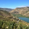 Into the Douro Valley of Portugal