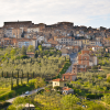 Life on an Agriturismo in Southern Tuscany