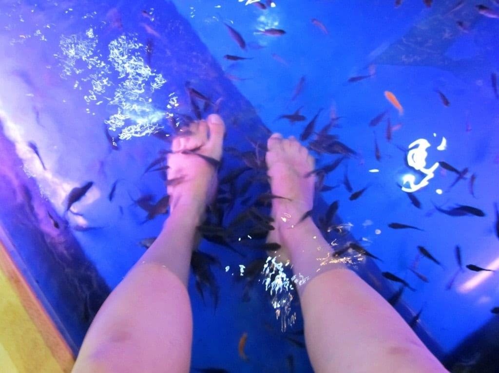 Facing my phobia at the fish spa in bangkok adventurous for Fish spa near me