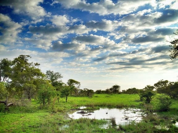 the extraordinary beauty of kruger national park