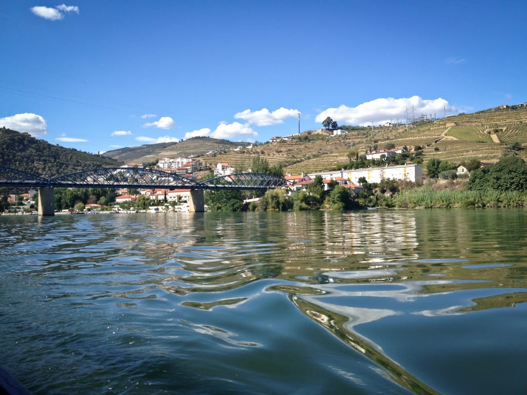 Cruising the Douro