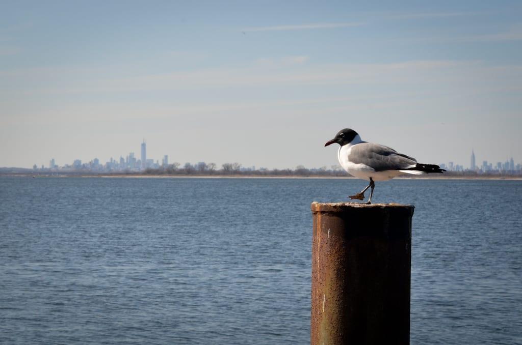 View from Rockaways