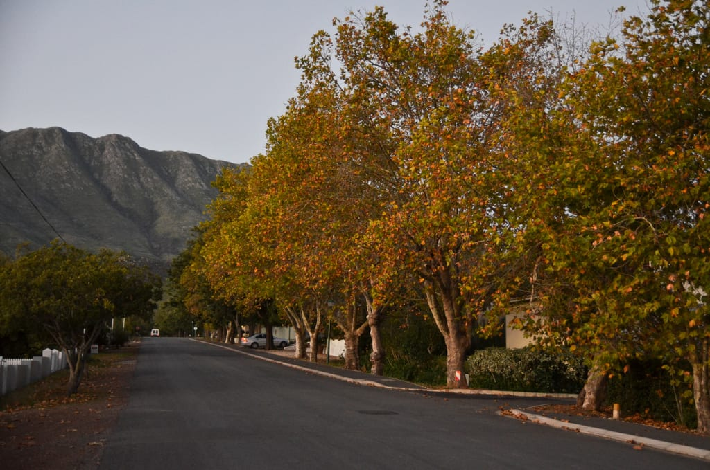 Autumn in Swellendam