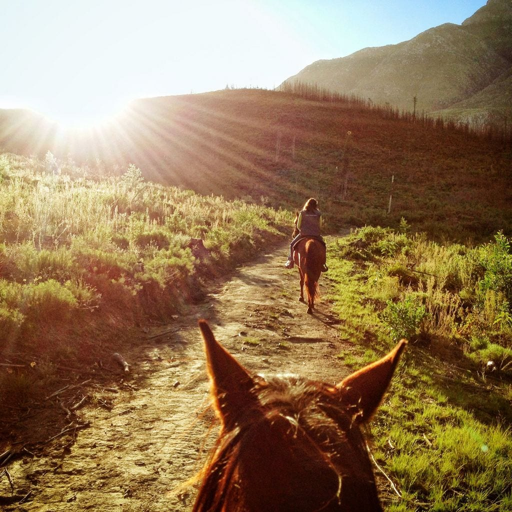 Horseback Riding in Swellendam