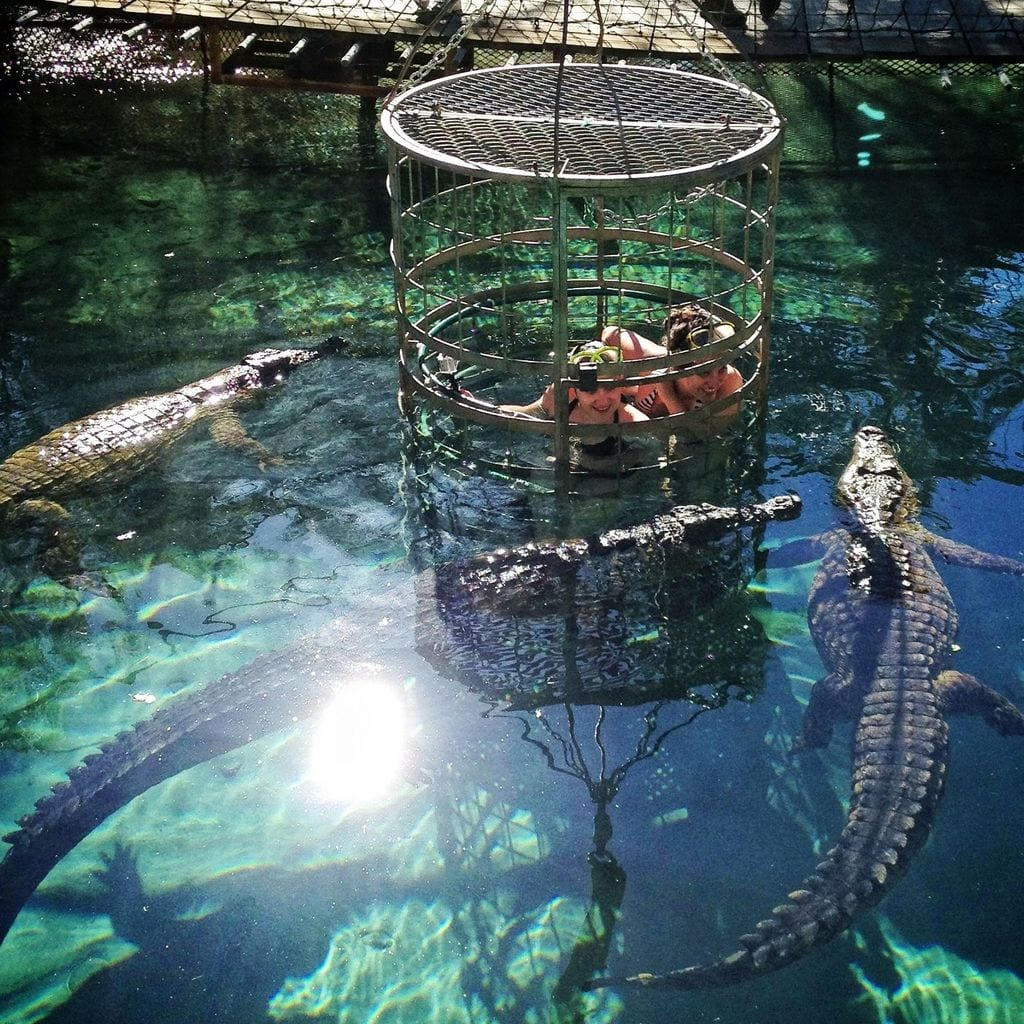 Kate and Nadine Croc Diving