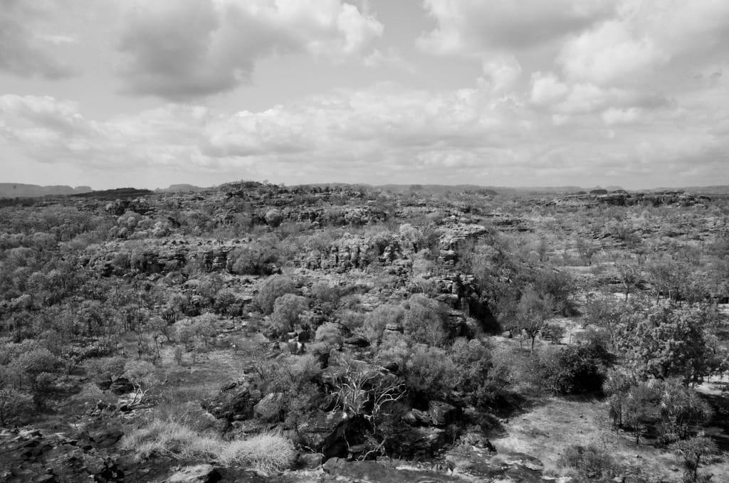 Kakadu National Park Black and White