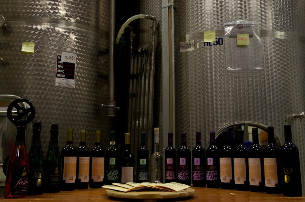 Annual Wine Harvest