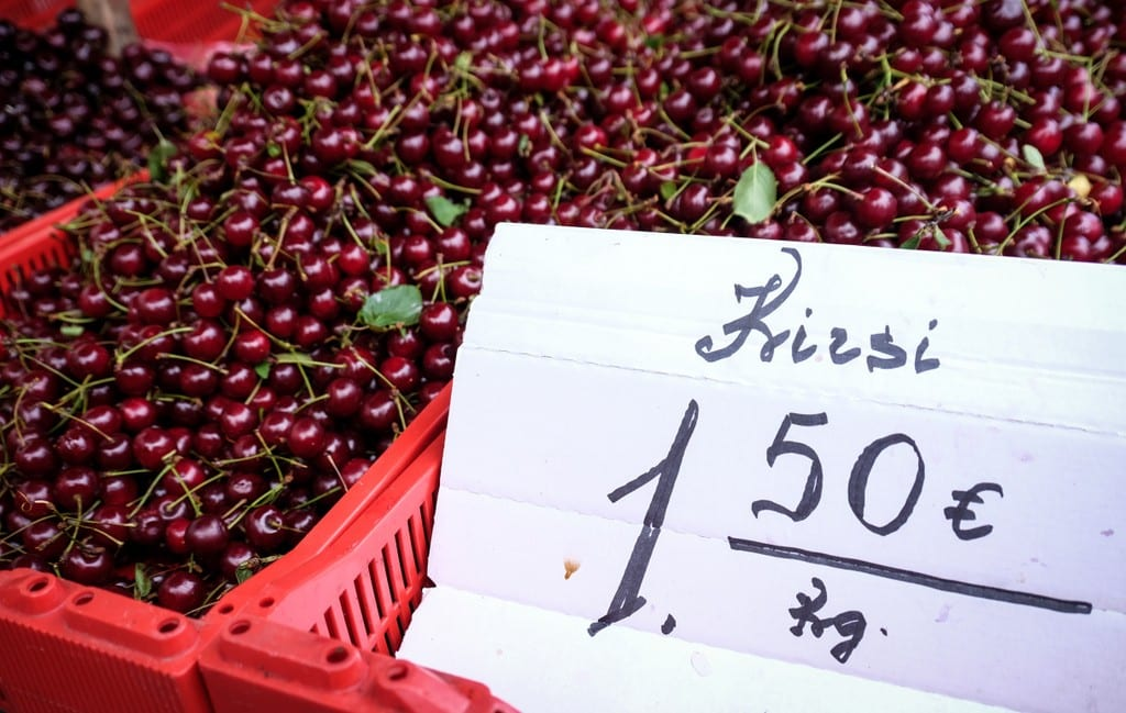 Crates full of dark red cherries in Riga. A sign says that they cost 1.50 euros per kilogram.