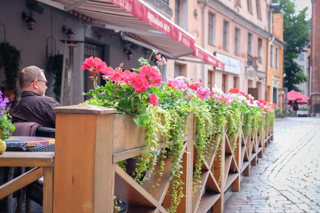 Riga Cafe Flowers