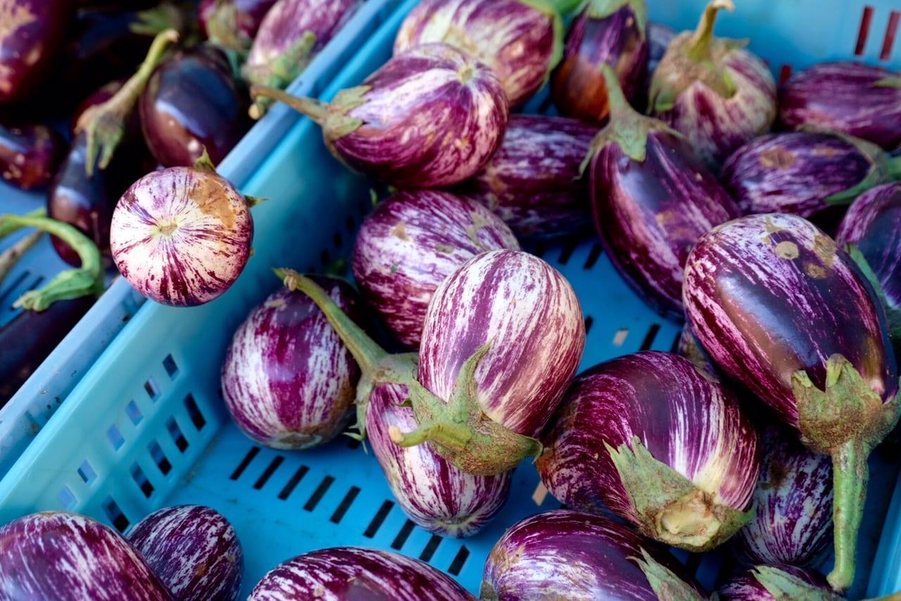 Pollenca Eggplants