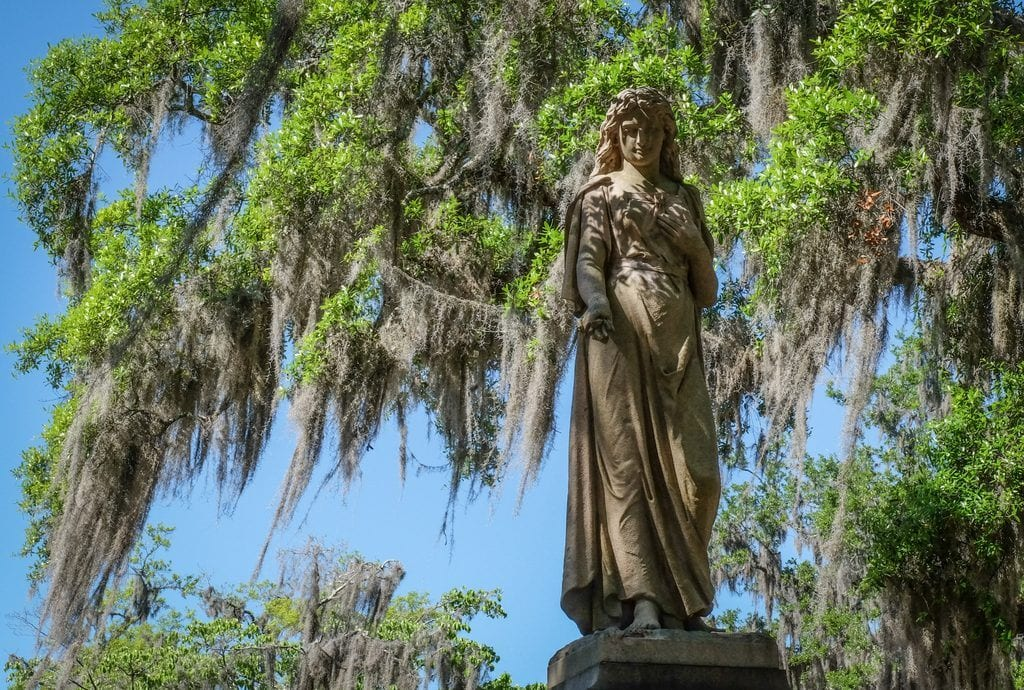 An angel statue with the backdrop of Spanish moss and a blue sky in Bonaventure Cemetery, Savannah.