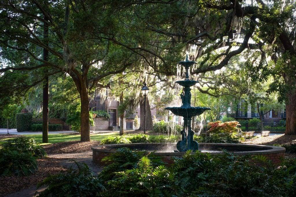 A square in Savannah with a forest green fountain in the middle, surrounded by oak trees dripping Spanish moss.