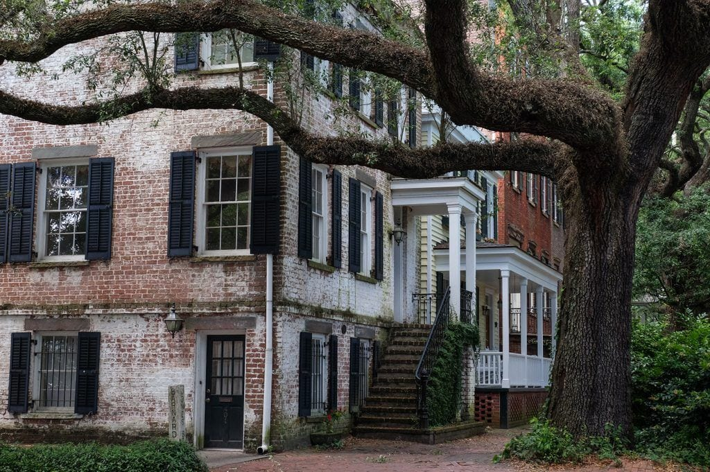 White brick houses in Savannah, Georgia, with a twisting oak tree in front.
