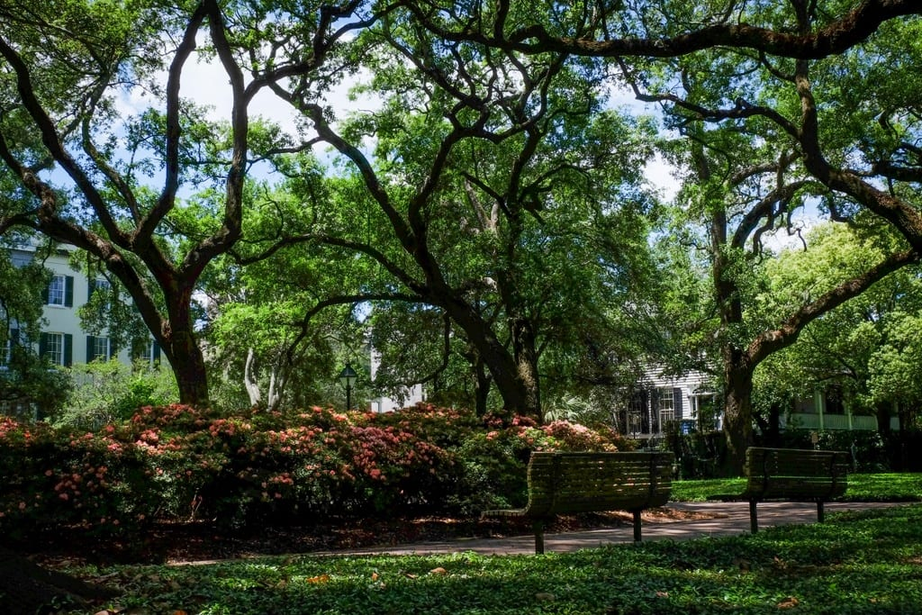 16 Reasons to Fall in Love with Savannah, Georgia