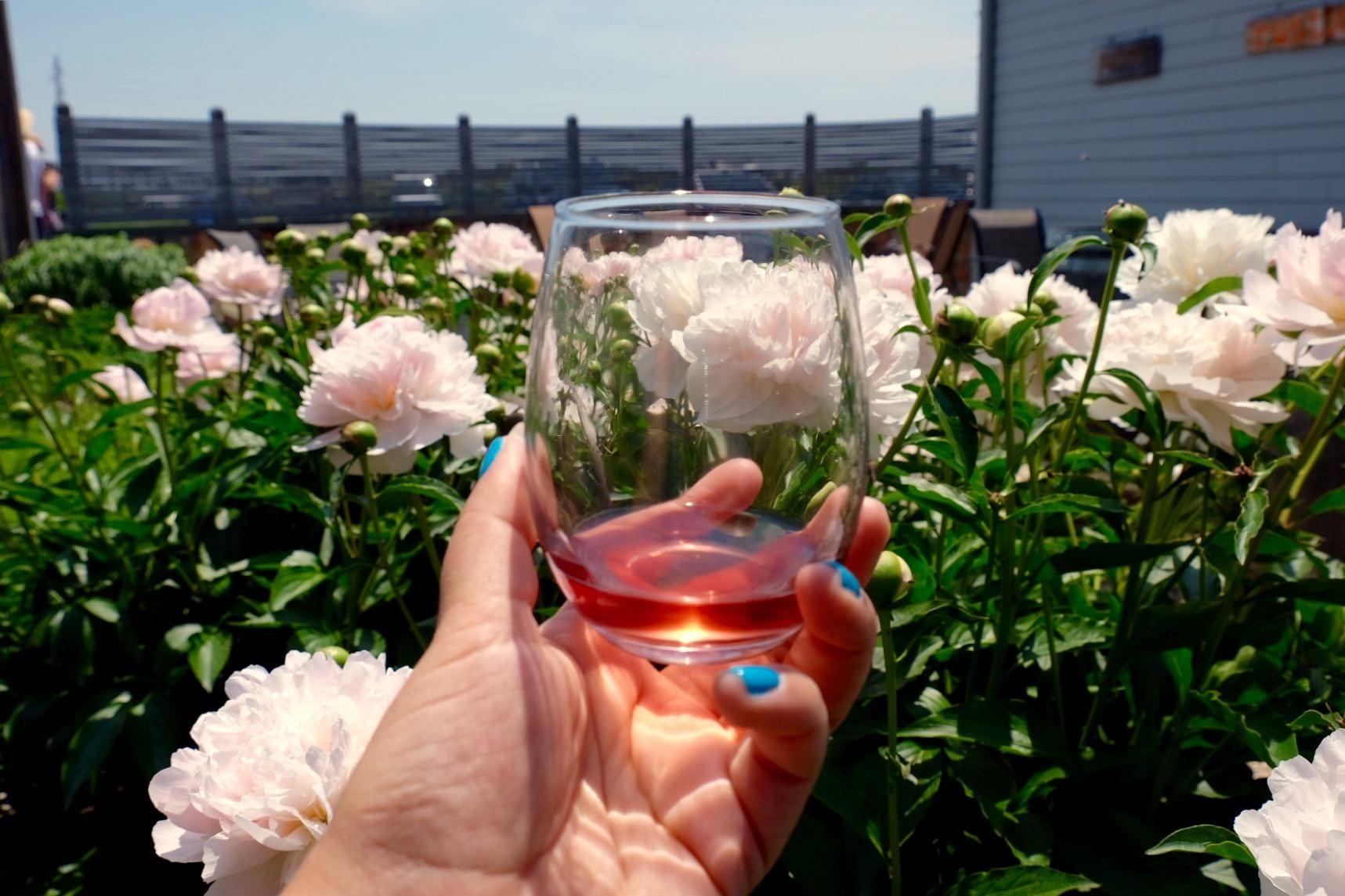 Shinn Vineyards, North Fork Long Island Wine