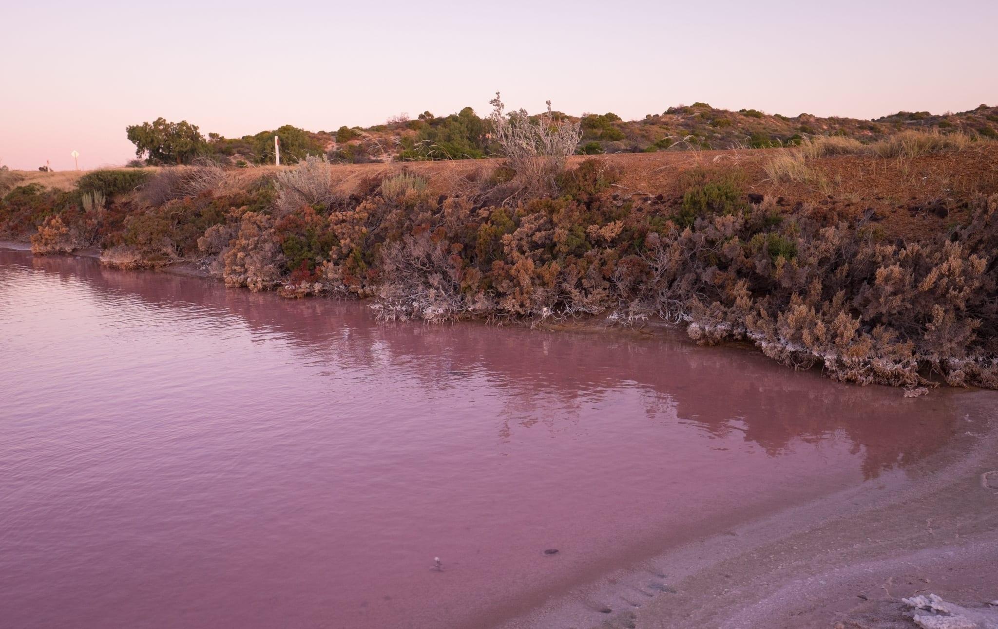 Western Australia Hutt Lagoon Pink Lake