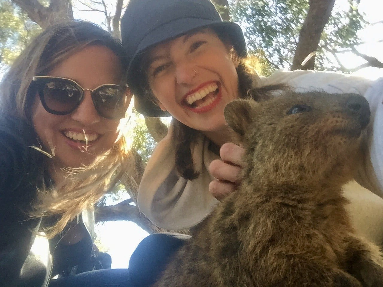 Kate, Freedi and Quokka