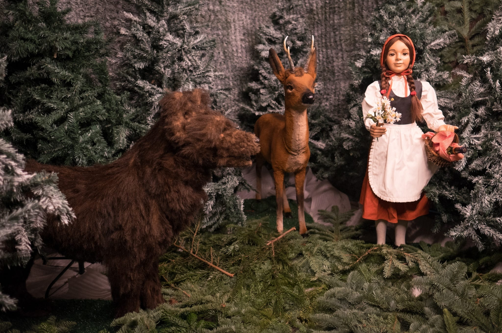 Little Red Riding Hood Christmas in Bavaria