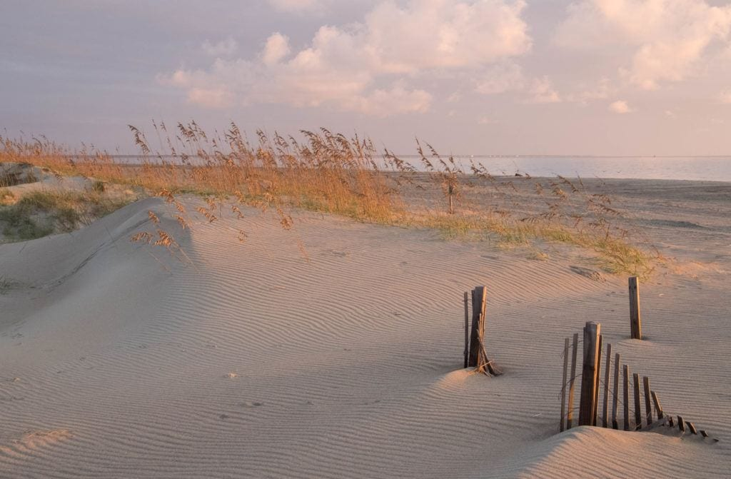 Sand dunes topped with amber grasses and the ocean in the background under a lavender sky at sunrise on Tybee Island, Georgia.