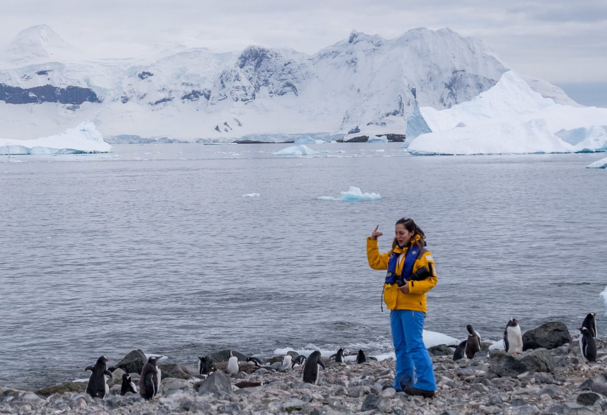 Antarctica and the Traveler?s Ego