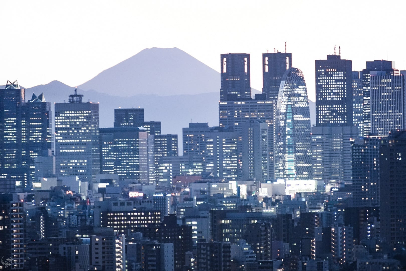 Where to Stay in Tokyo ? Best Neighborhoods and Accommodation