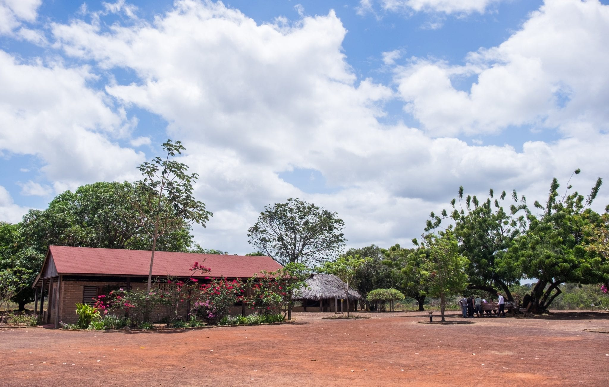 DSCF7366 ▷ ¿Qué es realmente como viajar a Guyana?