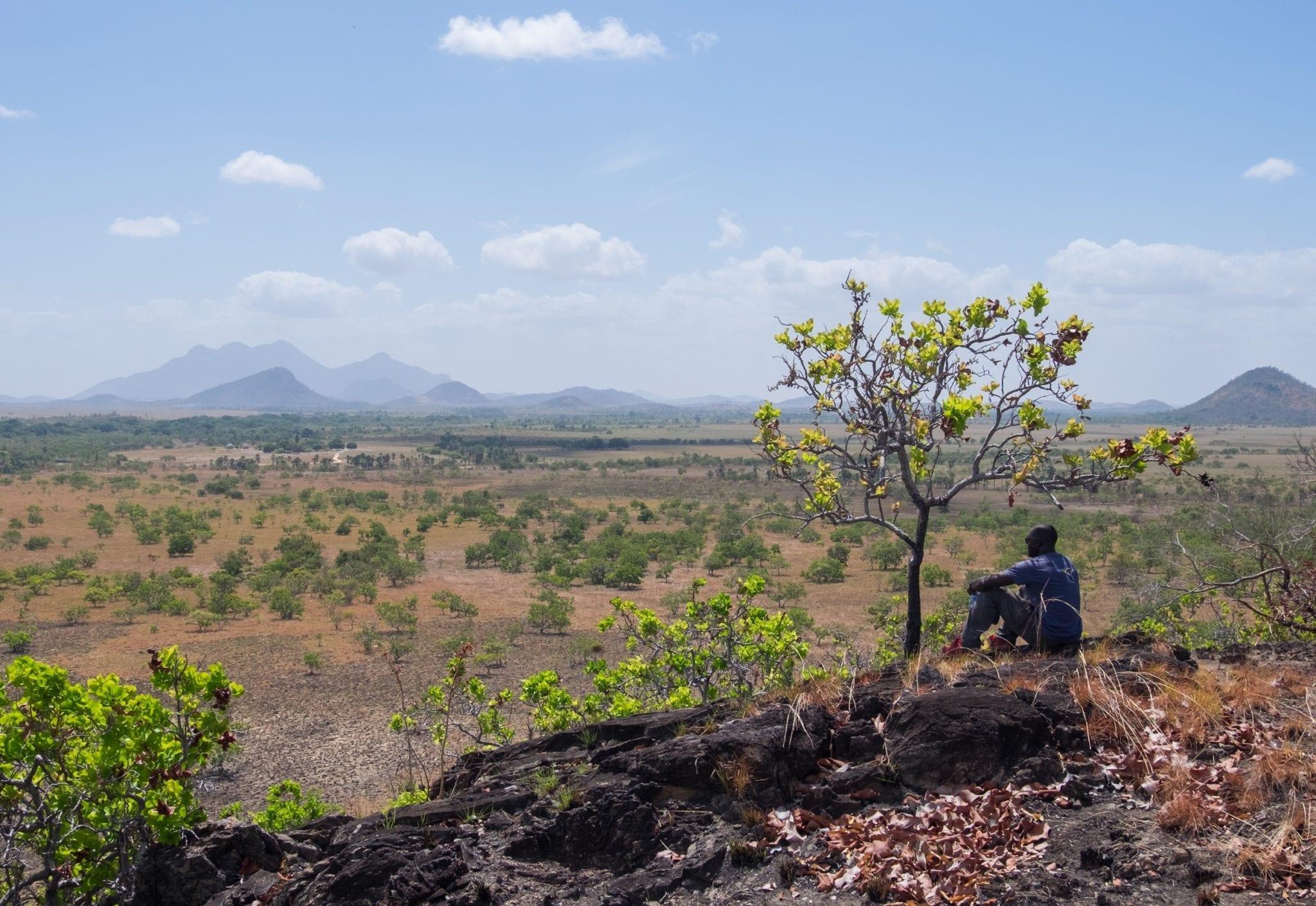 DSCF7582 ▷ ¿Qué es realmente como viajar a Guyana?