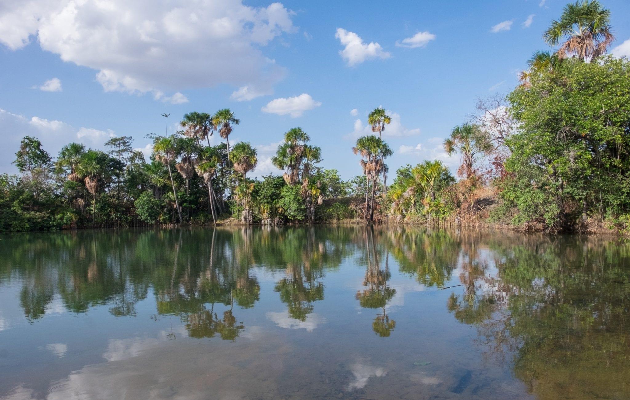DSCF7599 ▷ ¿Qué es realmente como viajar a Guyana?