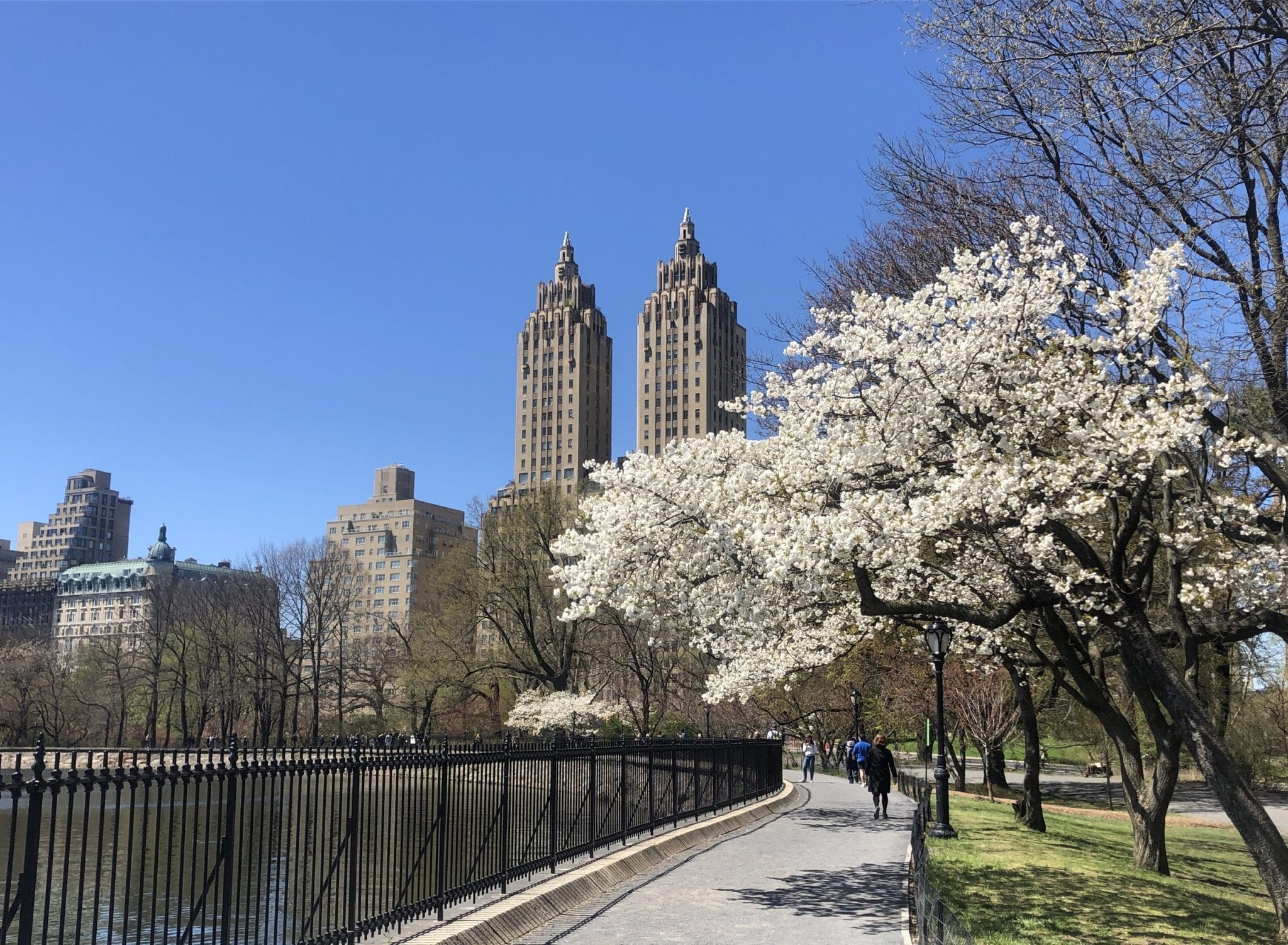 How Far Is New York From Boston >> Moving From Boston To New York 25 Tips You Need To Know