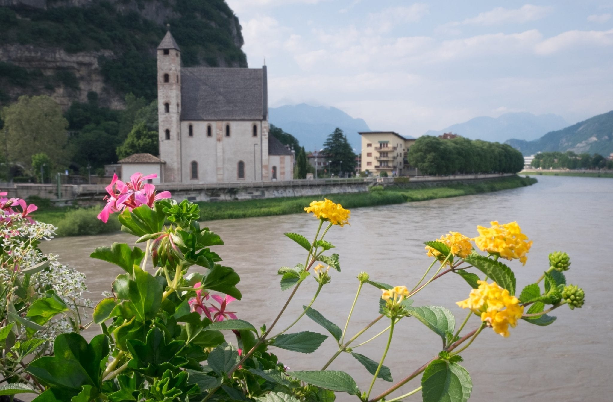 Yellow and pink flowers blooming from a blow in the foreground; a tiny church and river in the background. In Trento, Italy.