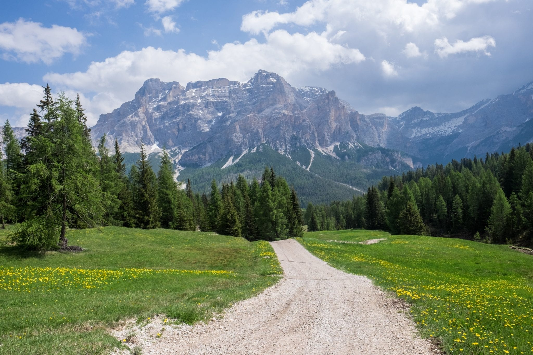 A worn path leads through the grass in the Dolomites. Ion the background are pine trees, huge blue and gray mountains, and a blue sky with puffy white clouds above all.