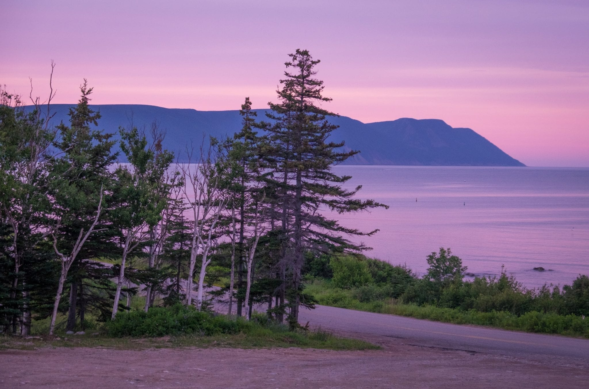 A bright pink and purple sunset over purple mountains. Evergreen trees in the foreground.