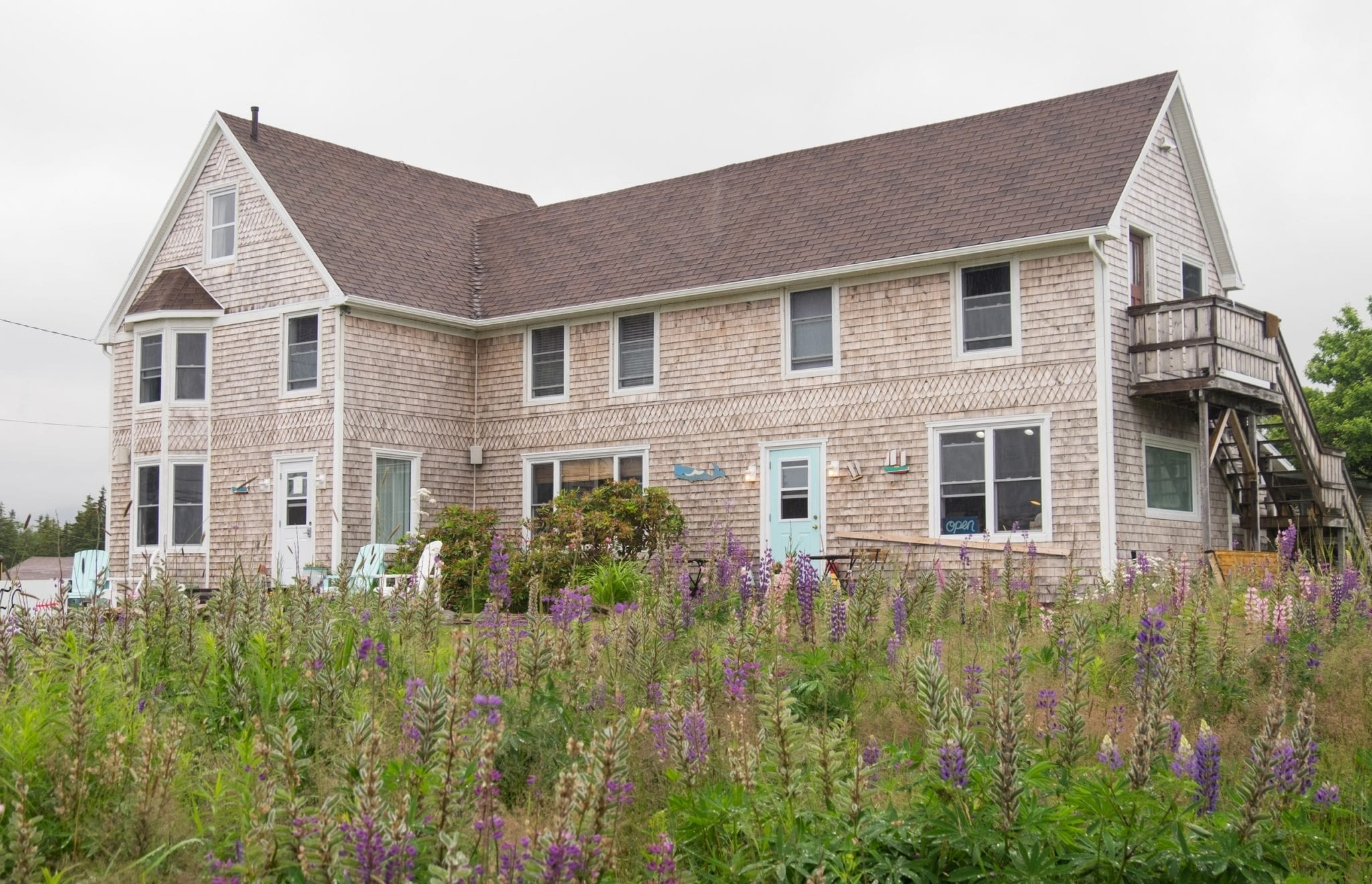 A Scottish-looking gray house in front of purple flowers in Cape Breton.