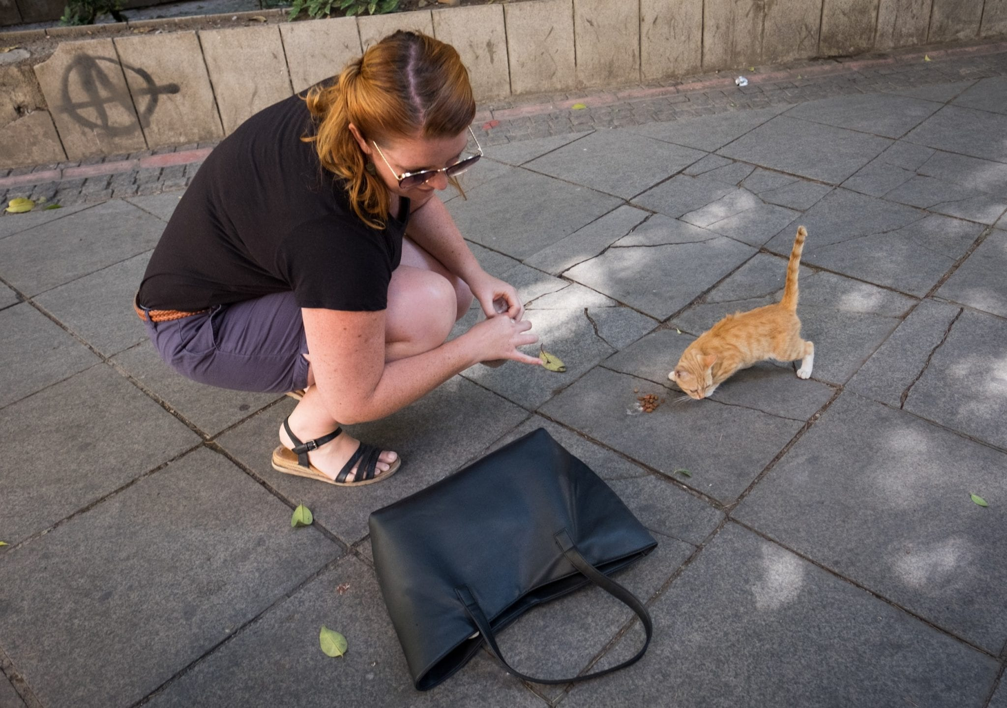 Meg from Food Fun Travel kneels down next to a tiny orange kitten, feeding him from the cat food she keeps in her purse.