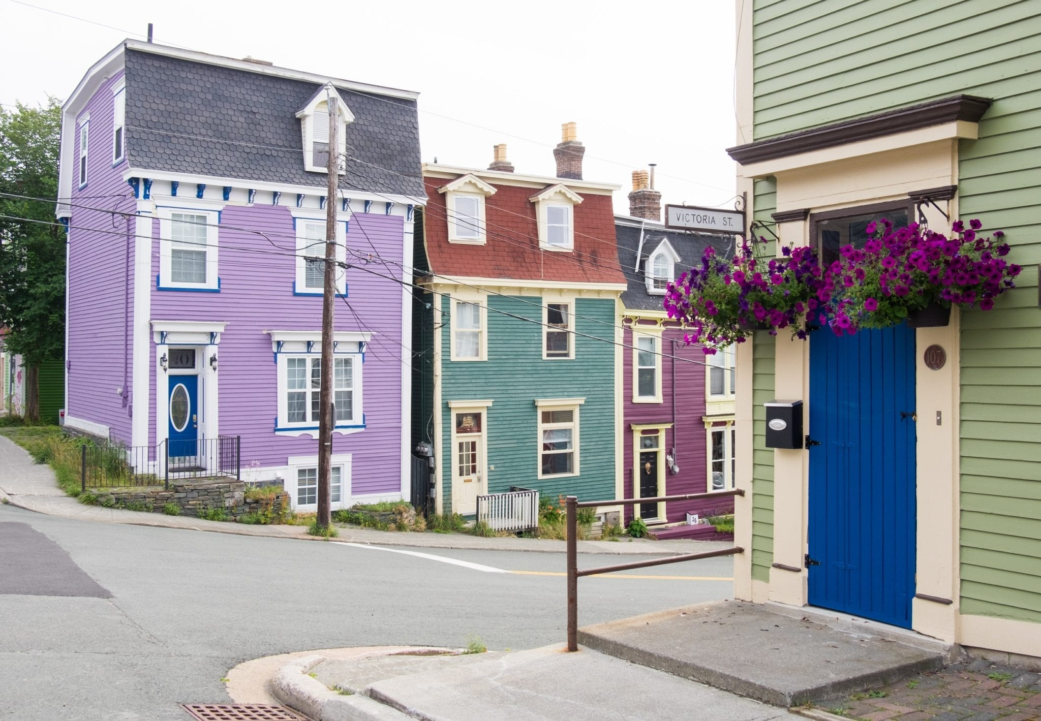 Victoria Street in Jelly Bean Row, with a bright purple, dark blue-green, plum, and pea-green set of houses.