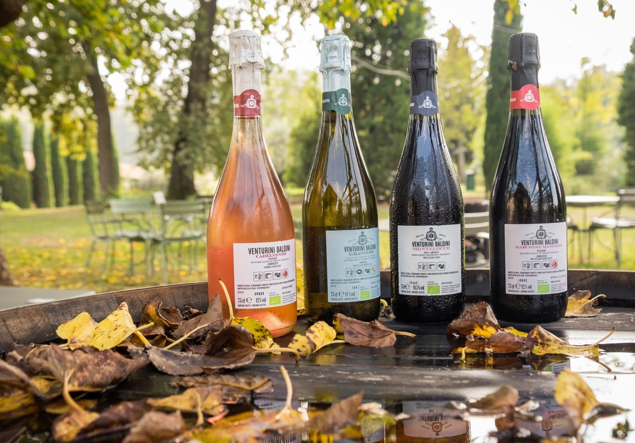 Four wine bottles (one rose, one white, two red) resting on a bottle surrounded by brown leaves, greenery in the background.