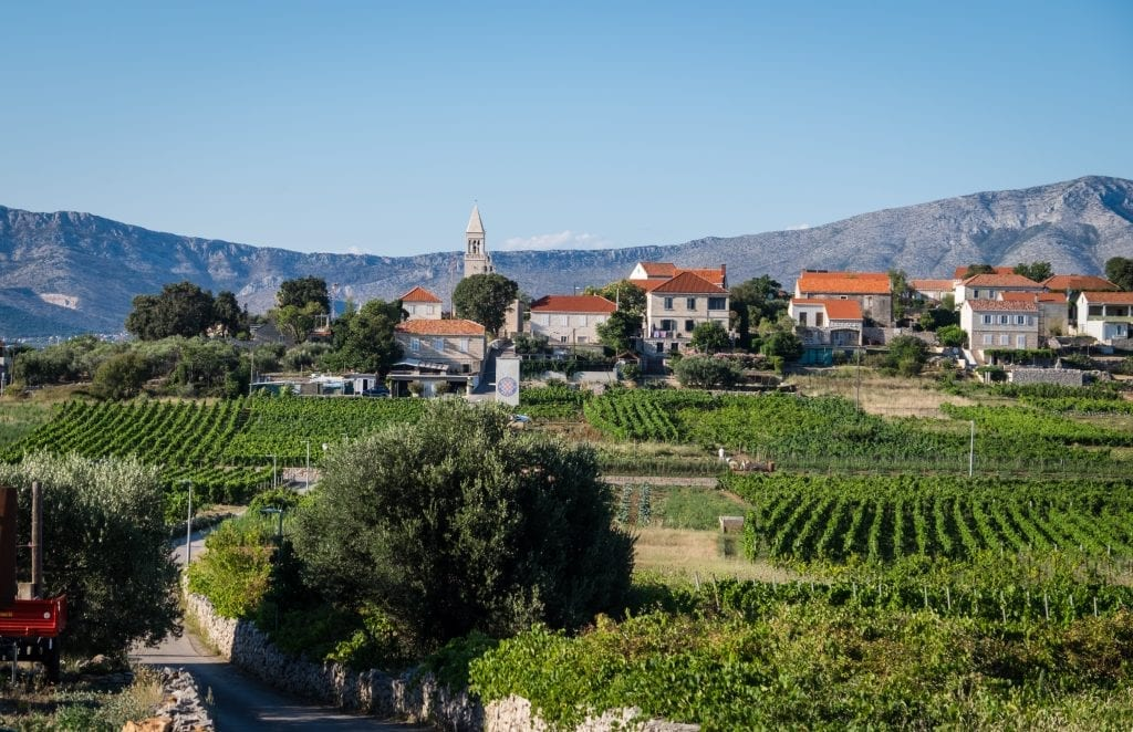 Endless vineyards leading to a small town (Lumbarda) with stone buildings and orange roofs, and a church tower. Mountains in the background.