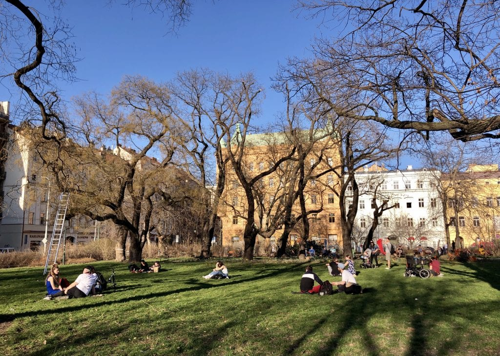 A few dozen people sitting on the grass in a park in Prague, bare trees rising around them. You can see it's a beautiful day with a perfect blue sky.