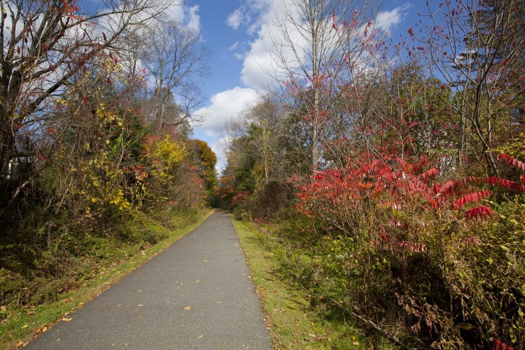 A smooth paved trail, lush vegetation in fall colors on each side.