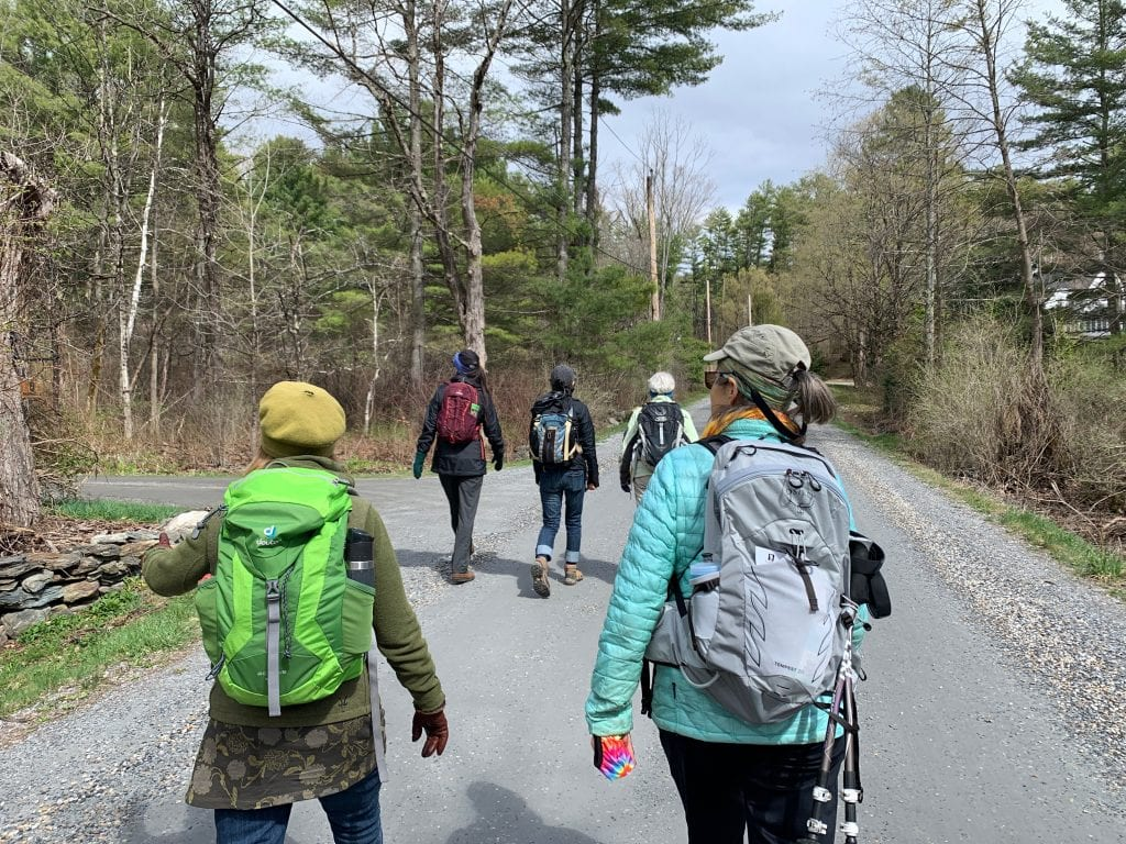 Five people in jackets and backpacks walking along a paved path through the woods in the Berkshires.