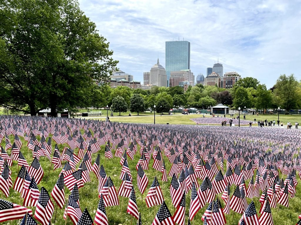 Thousands of mini American flags perched on the grass on Boston Common; in the background, you can see Boston's skyscrapers.