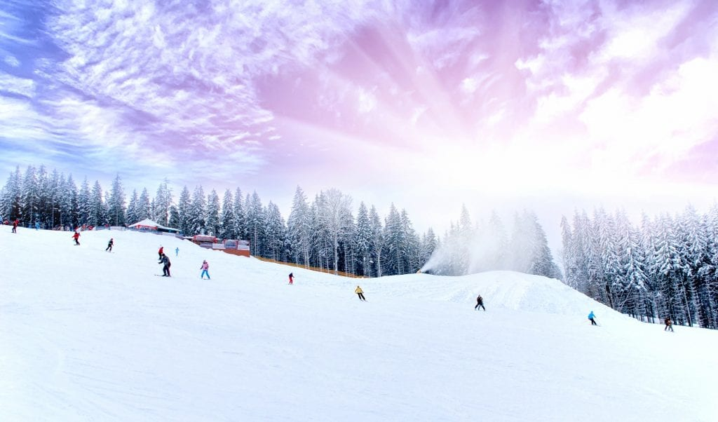Several skiers skiing down a forested mountain, a purple sky behind them.
