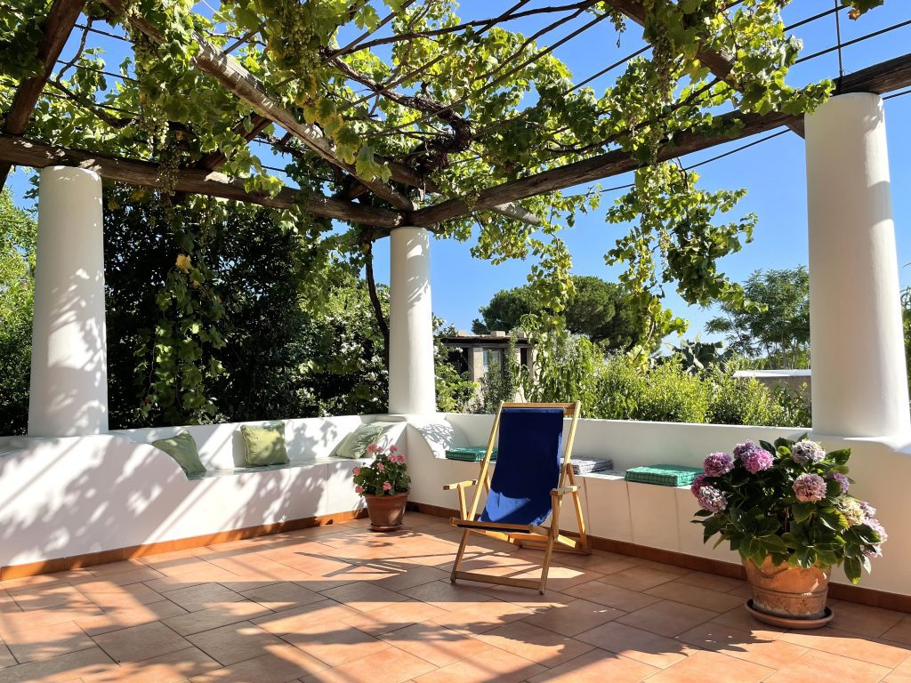 A terrace with benches and a lounge chair at Agriturismo Solemare, the top of it a trellis covered with Malvasia grape vines.