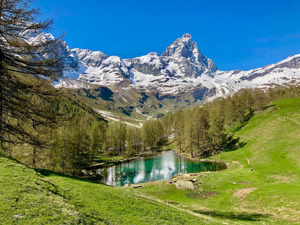 The pointy snow-covered mountain of the Matterhorn in the background.In the foreground: a green glassy lake surrounded by pine trees and green grass, all underneath a bright blue sky.