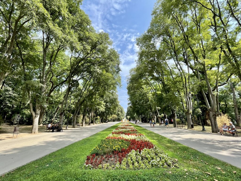 A park in Varna with a big grassy divider running down the street, topped with green and red flowers in a swirling pattern.