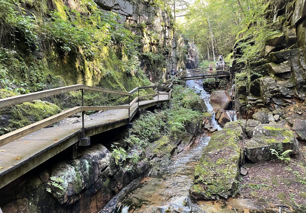 A wooden walkway passing through a two rock walls, everything covered with mosses, ferns, and greenery, as a small river flows underneath.